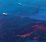 Gulf of Mexico Oil Spill/Kris Krug